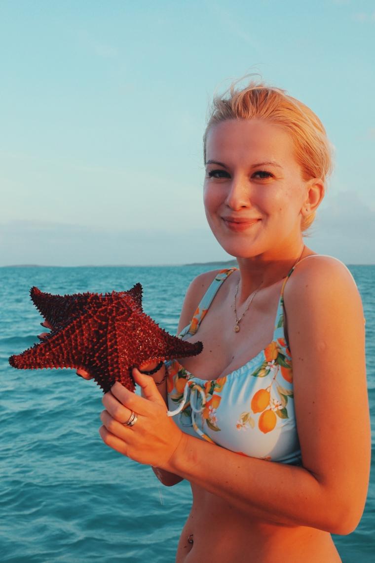 bahamas starfish