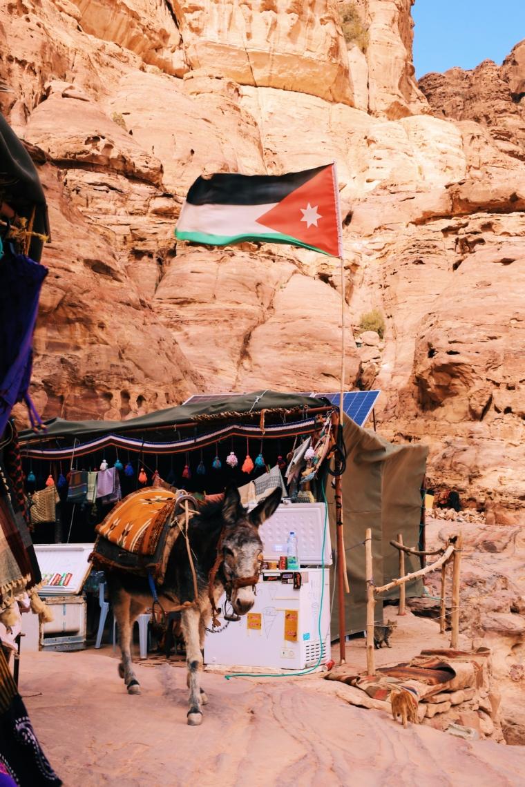jordanien petra