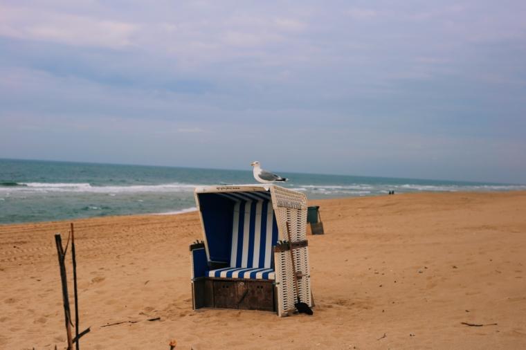 sylt strand strandkorb möve