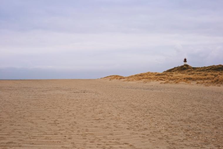 sylt einsamer strand