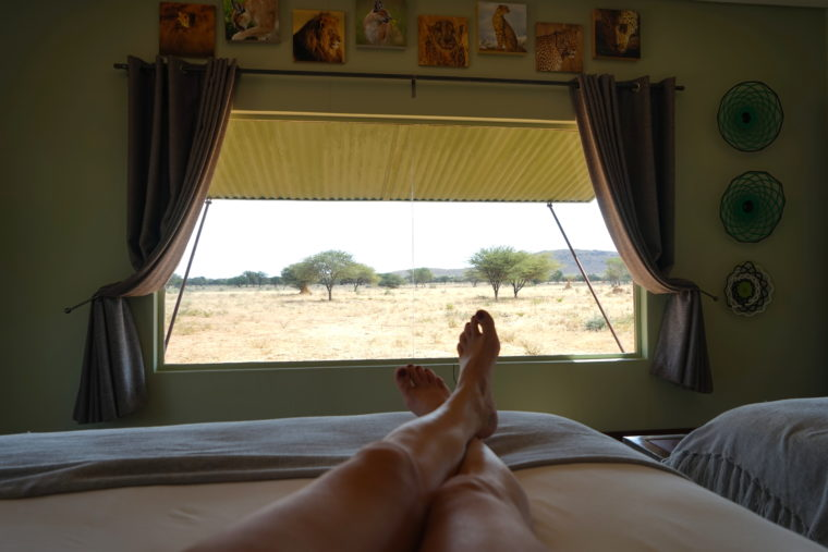 VIEW ROOM PLAINS CAMP OKONJIMA