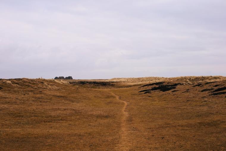 sylt dünen spaziergang