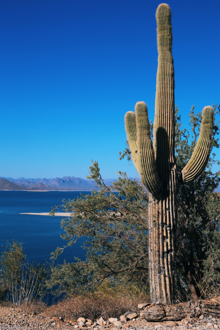 Lake Pleasant scenic route arizona road trip