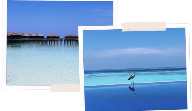 MALDIVES TOP TRAVEL TIPS