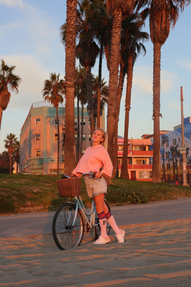 bike santa monica venice beach