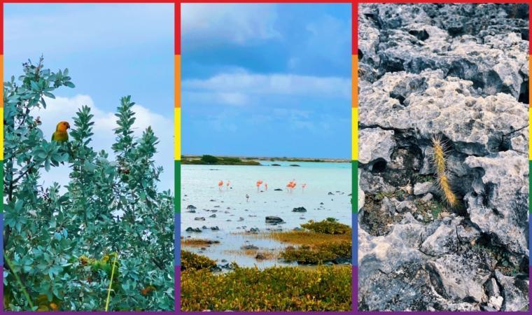 Bonaire Washington Slagbaai National Park